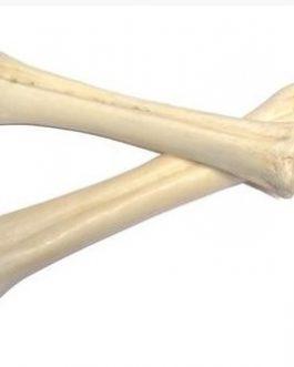Runderbeen Calcium